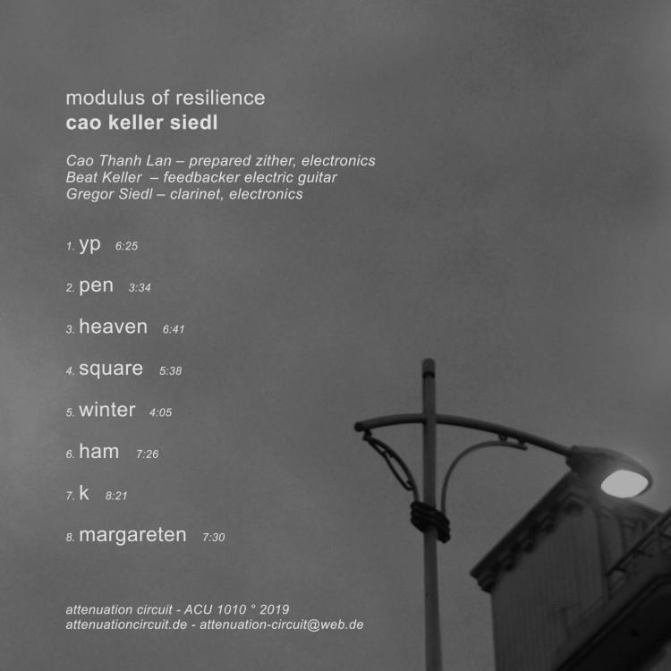 CAO KELLER SIEDL modulus of resilience cover back