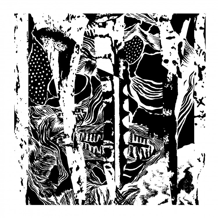 NOCTURNAL HISS DEGRADER cover front