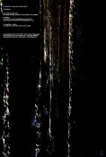 GX Jupitter-Larsen & Ace Farren Ford / Le Scrambled Debutante feat. EMERGE split Inlay